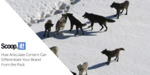 How Articulate Content Can Differentiate Your Brand From the Pack